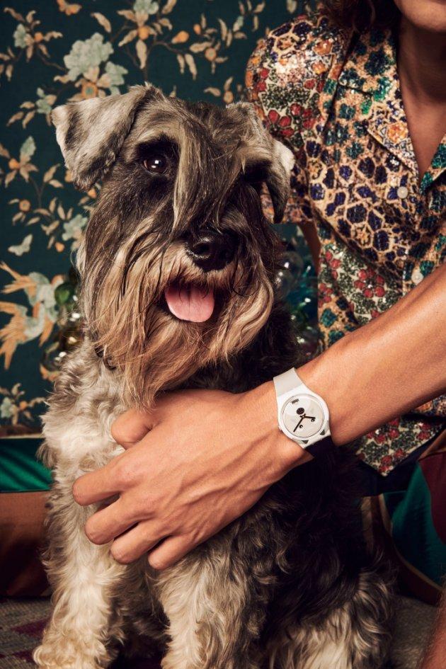 Swatch #dogday